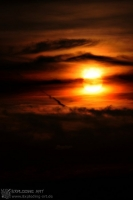 EveningFire