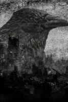 RavenCity
