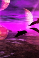 SpaceDolphins2