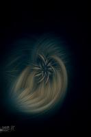 Twirling018