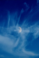 MoonCorona