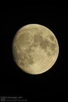 MoonNovember