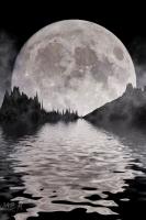 moonshine018