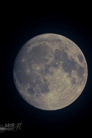 moonshine022