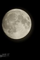 moonshine023