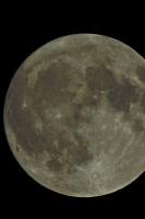 moonshine025