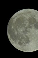 moonshine026