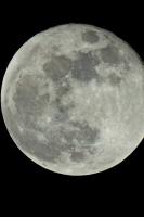 moonshine032