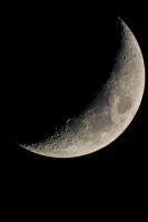 moonshine034