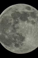 moonshine053