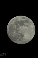 moonshine054