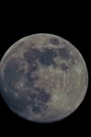 moonshine055