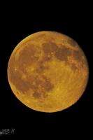 moonshine057