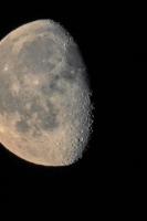 moonshine063